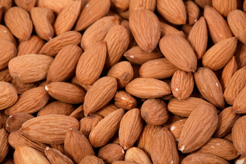 Nuts are high in easy to digest protein