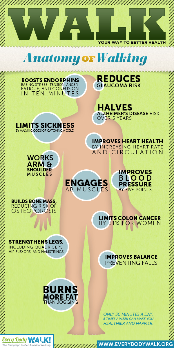 walking-infographic-picture