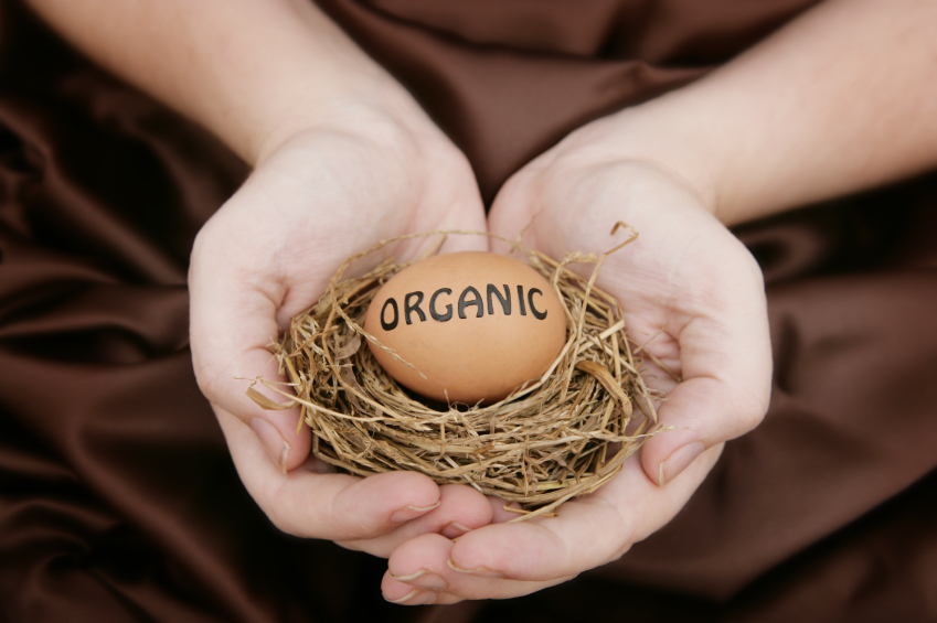 If you are the kind of person who enjoys eating eggs for breakfast every day, chances are that the 'organic' craze has you a little worried too.