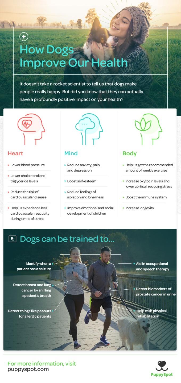 puppyspot_dogs_health_2000px